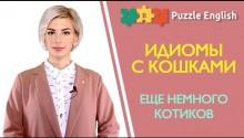 Английские идиомы с котиками: Put the cat among the pigeons и др.