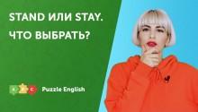 Что выбрать? Stand или Stay